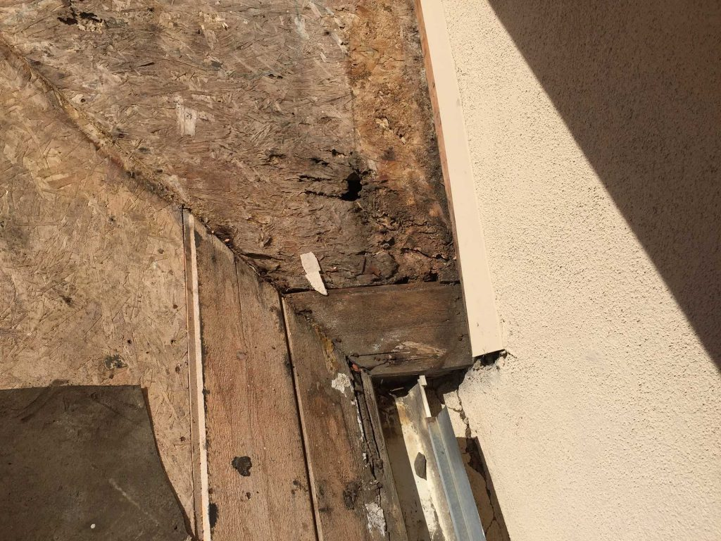 Sub-Roof-with-Termite-&-Dry-Rout-Wood-Repair